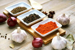Spices, garlic and onion Stock Photo