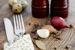Spices, garlic and onions, fork and knife. Spices, garlic and onions, fork and knife on a wooden table Royalty Free Stock Photography
