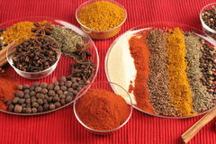 Spices on glass plates Royalty Free Stock Photography