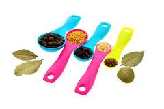 Spices and grains on measuring spoons Stock Images