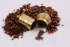 Spices and grinder. Colorful spices and grinder on white background royalty free stock photo