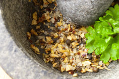 Spices in a grinder. Spices and fresh parsley in a stone grinder Royalty Free Stock Photos