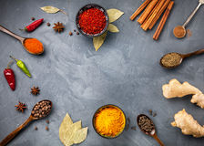 Spices on grunge grey background Royalty Free Stock Photo