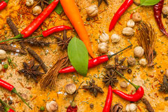Spices for herb and cooking on brown background. Royalty Free Stock Photos