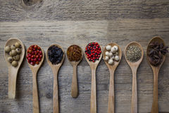 Spices and herb set on wood spoons Royalty Free Stock Photo