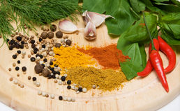 Spices and herbs. On a cutting board close up Royalty Free Stock Photos
