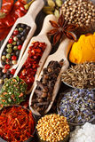 Spices and herbs. Stock Photography
