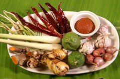 Spices and herbs. Plate of spices and herbs with garlic, leeks, ginger and more Stock Image