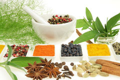 Spices and herbs. Royalty Free Stock Photo