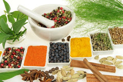 Spices and herbs. Stock Photo