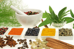 Spices and herbs. Royalty Free Stock Photography