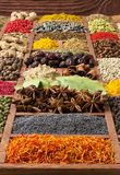 Spices and herbs background. Flavors from around the world. Colo. Spices and herbs collection in wooden tray. Colorful condiments as background for design royalty free stock images