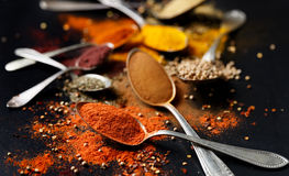 Spices and herbs on black background Stock Photography