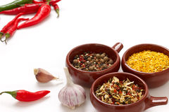 Spices and herbs in bowls stock image