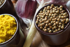 Spices and herbs in ceramic bowls. Coriander and curcuma seasoni Stock Photography