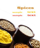 Spices and herbs in ceramic bowls. seasoning. Colorful natural a Royalty Free Stock Photo