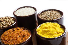 Spices and herbs in ceramic bowls. seasoning. Colorful natural a Royalty Free Stock Photos
