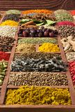 Spices and herbs collection in wooden tray. Colorful condiments as background for design  packing with food. Different seasoning. Indian spices and herbs in stock image