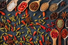 Spices and herbs for cooking  in wooden spoons Royalty Free Stock Photo