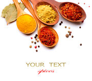 Spices and herbs Stock Images