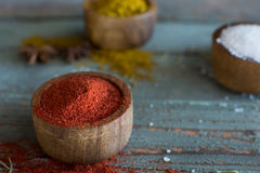 Spices. Herbs. Curry, salt, pepper Saffron, turmeric, tandori masala and other on a wooden rustic background Royalty Free Stock Image
