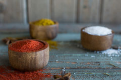 Spices. Herbs. Curry, salt, pepper Saffron, turmeric, tandori masala and other on a wooden rustic background Royalty Free Stock Photos