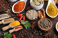 Spices and herbs. Herbs and spices on dark wooden background. Aromatic ingredients and natural food additives Stock Photo