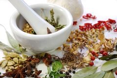 dried Spices and herbs with mortar Stock Image