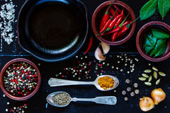 Spices and herbs. Food background with cuisine ingredients on dark vintage texture. Spices and herbs selection. Top view. Colorful natural additives Stock Photos
