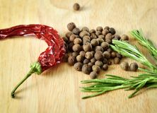 Spices and herbs. Royalty Free Stock Photos