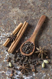 Spices and herbs. Food and cuisine ingredients. Spices and herbs. Food and cuisine ingredients- star anise, cardamom, chili, cinnamon, cloves, peppercorn Stock Photo