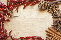 Spices and herbs frame Stock Image