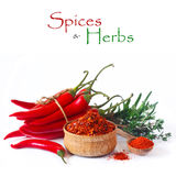 Spices and herbs. Stock Photos