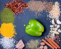 Spices, herbs and fresh green pepper on slate tray on an old rustic table. Top view. stock photography