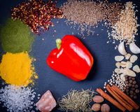 Spices, herbs and fresh red pepper on slate tray on an old rustic table. Top view. Rustic style. royalty free stock images