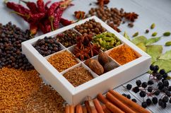 Spices and herbs on the gray kitchen table: star anise, fragrant pepper, cinnamon, nutmeg, bay leaves, paprika close up. Spices texture background. Ingredients royalty free stock images