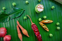 Spices and herbs on green background Royalty Free Stock Photos