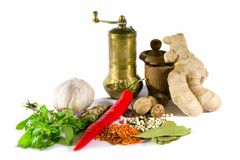 Spices, herbs and  grinder Royalty Free Stock Photography
