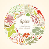 Spices and herbs icons in circle composition. Vector healthy lifestyle concept vector illustration