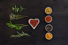Spices and herbs isolated on a dark wooden table Stock Image