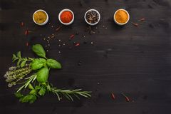 Spices and herbs isolated on a dark wooden table stock photo