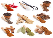 Spices and herbs isolated on white Royalty Free Stock Photo