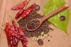Spices and herbs in metal bowls and wooden spoons. Food and cuisine ingredients. Stock Photo