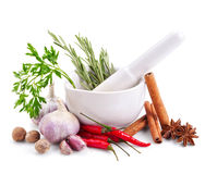 Spices and herbs in mortar  on white Stock Photos