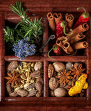 Spices and herbs in old wooden box Royalty Free Stock Images