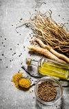 Spices , herbs and olive oil on a stone stand. Royalty Free Stock Photo