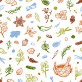 Spices & Herbs, Pattern. Stock Photo