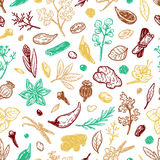 Spices & Herbs, Pattern. Pattern with hand drawn vector spices and herbs. Medicinal, cosmetic, culinary plants. Seeds, branches, flowers and leaves Royalty Free Stock Photography