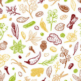Spices & Herbs, Pattern. Pattern with hand drawn vector spices and herbs. Medicinal, cosmetic, culinary plants. Seeds, branches, flowers and leaves Stock Photo