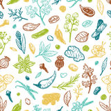 Spices & Herbs, Pattern. Pattern with hand drawn vector spices and herbs. Medicinal, cosmetic, culinary plants. Seeds, branches, flowers and leaves Stock Photos